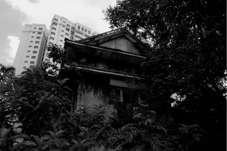 Overgrown House BW